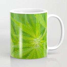 A Young Bud Coffee Mug
