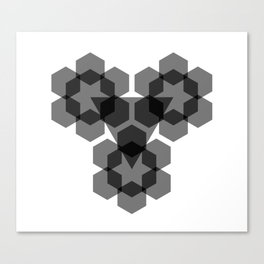 Opaque Blacks Canvas Print