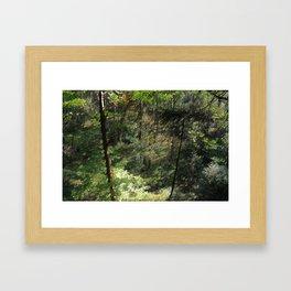 Grant Nature Framed Art Print