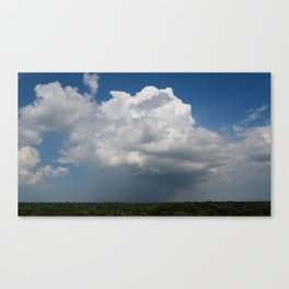 Summer Rain II, 2018 Canvas Print