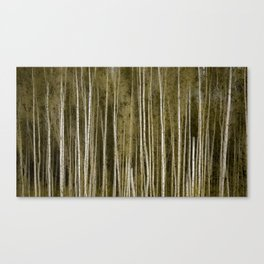 Bereza Canvas Print
