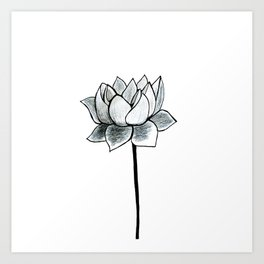 Grey Lotus Art Print