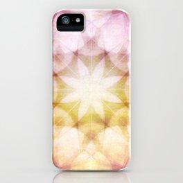 Colorful Petals iPhone Case