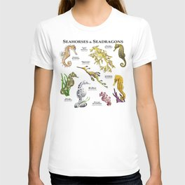 Seahorses and Seadragons T-shirt