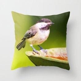 Bathtime for Birdie Throw Pillow