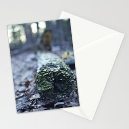 log Stationery Cards
