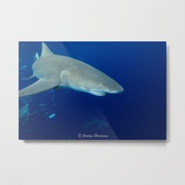 Deep Blue Lemon Metal Print