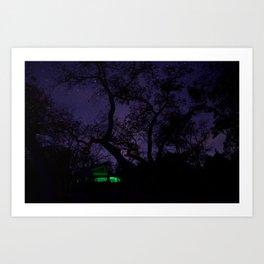Star Lit Nights Art Print