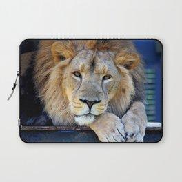 Lion 1 Laptop Sleeve