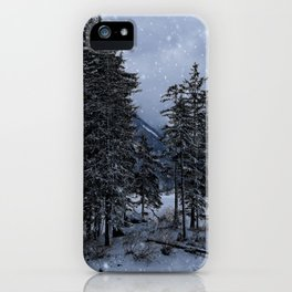 Trees At The Frozen Lago del Predil iPhone Case