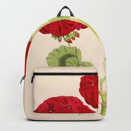 Double Zonal Pelargonium Vesta Vintage Flower Backpack