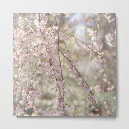 Spring in New York City #18 Metal Print