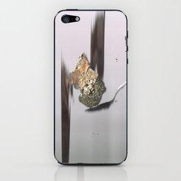 Golden Spoons iPhone Skin