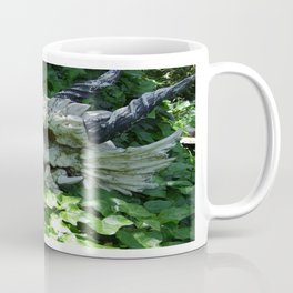 Dragon Skull Coffee Mug