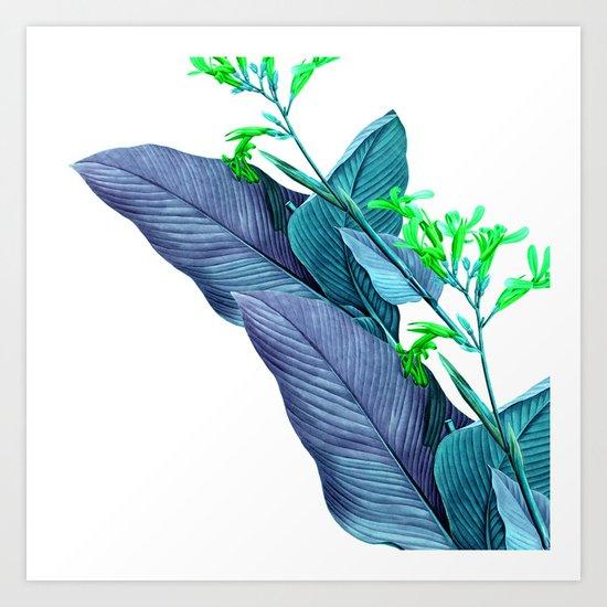 Leaf feathers Art Print