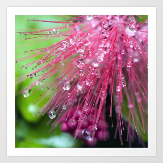 Glistening Diamonds of Pink Art Print