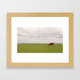 Cliffs of Moher: cow Framed Art Print