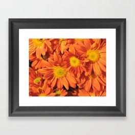 Petals a L'orange Framed Art Print