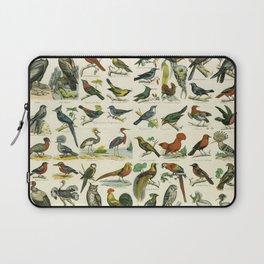 Natural History Birds Poster - sooo many! Laptop Sleeve