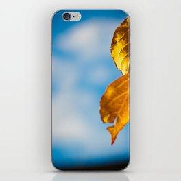 Catchy Autumn iPhone Skin