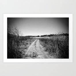 texas road Art Print