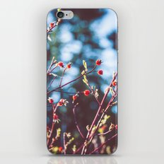 Berries at the Lake  iPhone & iPod Skin