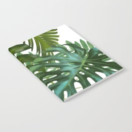 Palm and Monstra Notebook