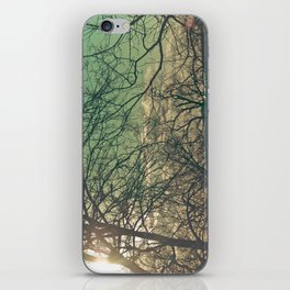 trees & sky. iPhone Skin