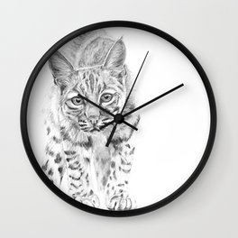 On the Prowl :: A Young Bobcat Wall Clock