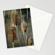 Teasel Stationery Cards