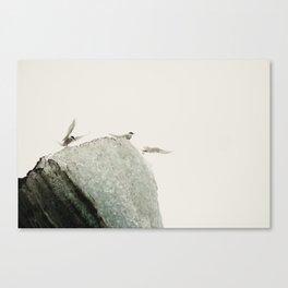 Flock of birds on the ice Canvas Print