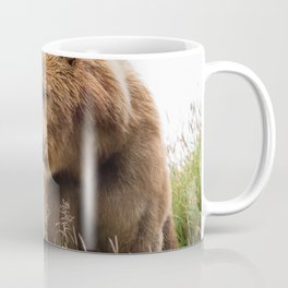 Bears Love Coffee Mug