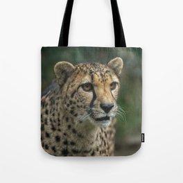 Cheetah's Face Tote Bag