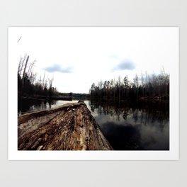 Log on Lake Art Print