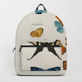 Collection of hand drawings of butterflies illustrated by Charles Dessalines Backpack