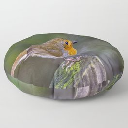 Perched. Floor Pillow