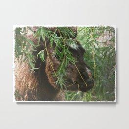 Mini and Willow Metal Print