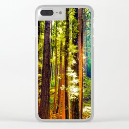 Henry Cowell Redwood State Park Clear iPhone Case