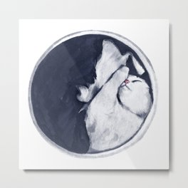 Sleeping Cat Metal Print