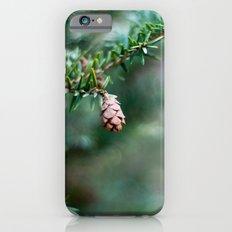 Tiny Pine Cone Slim Case iPhone 6s