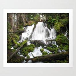 Clear Creek Falls Art Print