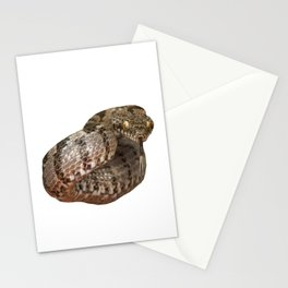 Ottoman Viper Snake Tasting The Air Stationery Cards