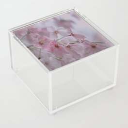 Delicate Pink Blossoms Acrylic Box