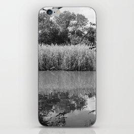 reflective iPhone Skin