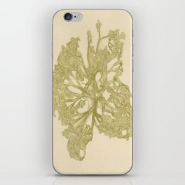 delicate starfish iPhone Skin