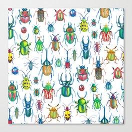 colours oc beetles pattern Canvas Print