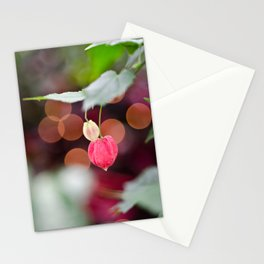 Festive Flowers Stationery Cards