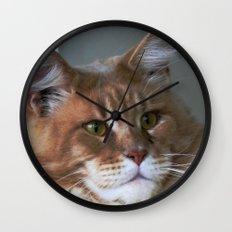 Orange cat with yellow eyes Wall Clock