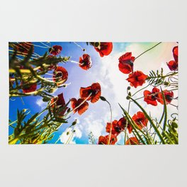 Poppies on the Sky Rug