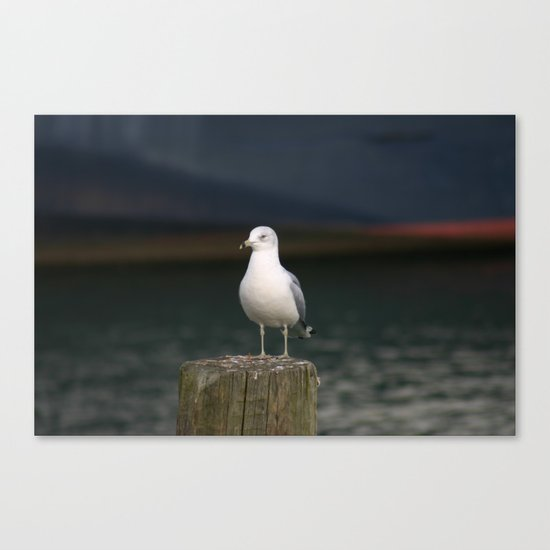 Alone - Photo Canvas Print